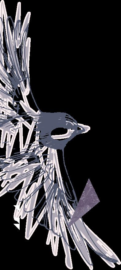 Left Sparrow